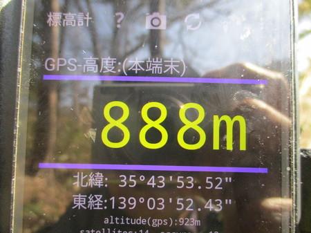 IMG_4681.JPG